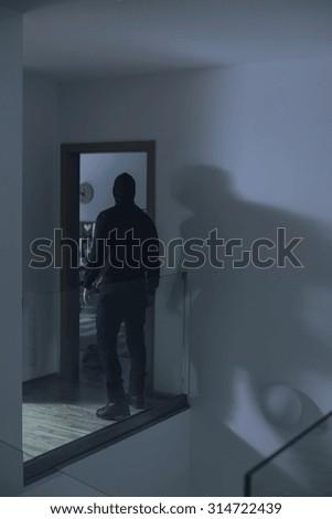 Image of burglar in house at night #314722439