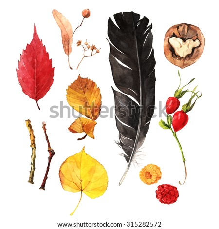 Watercolour autumn collection