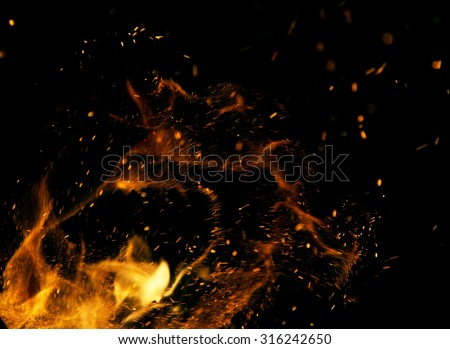 Fire flames on a black background #316242650