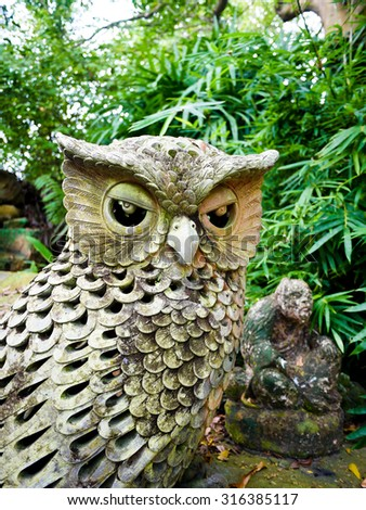 Owl Look at me