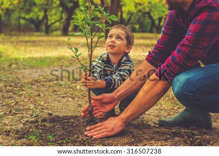 When will it grow? Curious little boy helping his father to plant the tree while working together in the garden Royalty-Free Stock Photo #316507238
