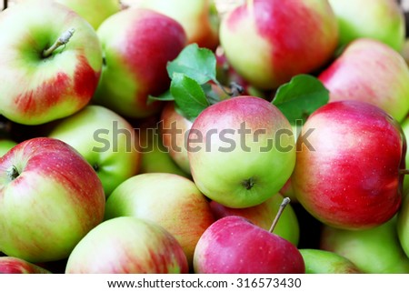Lots of ripe apples background #316573430