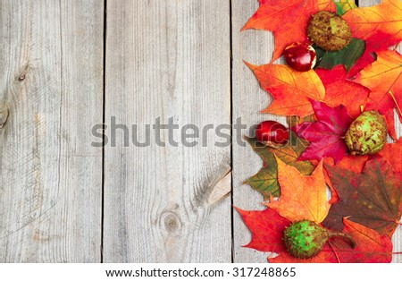 Still life, seasonal and holidays concept. Autumn leaves on a wooden background. Selective focus, copy space, top view #317248865