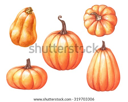 assorted pumpkins, squash, Halloween clip art, watercolor illustration isolated on white background