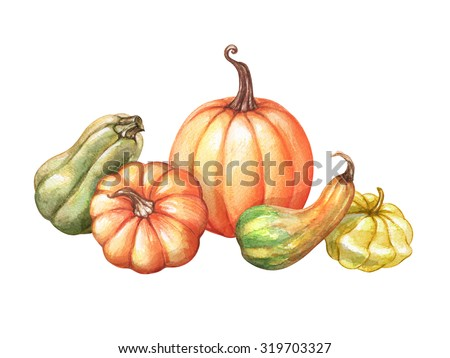 autumn harvest, assorted pumpkins, gourd, squash, watercolor illustration isolated on white background