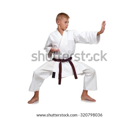 young karate boy isolated on white background #320798036