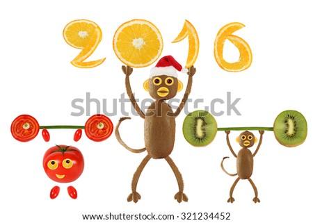 Monkey Santa Claus holding in 2016