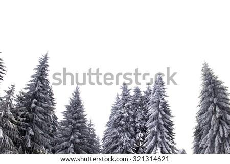 Winter #321314621
