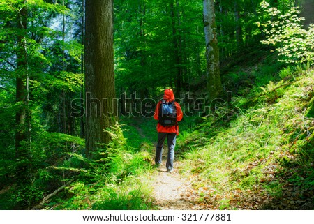 Man wearing red raincoat and a rucksack hiking in mountain forest in summer. Vintage effect, toned.