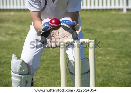 Wicket keeper catches cricket ball