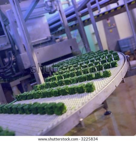 Frozen Food industry #3225834