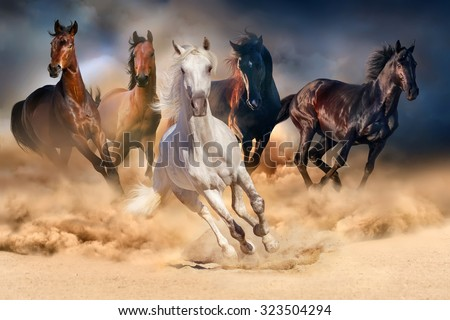 Horse herd run in desert sand storm against dramatic sky Royalty-Free Stock Photo #323504294