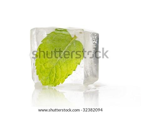 frozen leaf #32382094
