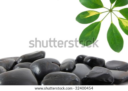 stones and leaves with copy space for text message