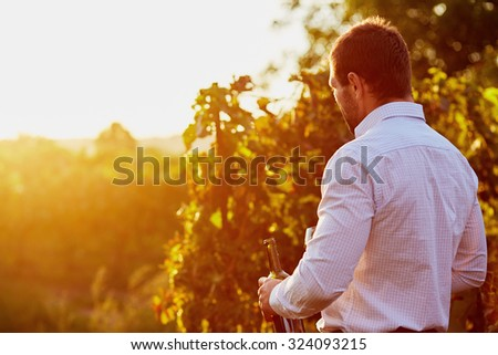 Man with a bottle of red wine in hand, at sunset in the vineyard. Toned #324093215