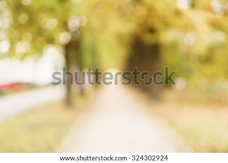 blurred bokeh background of autumn park, real photo #324302924