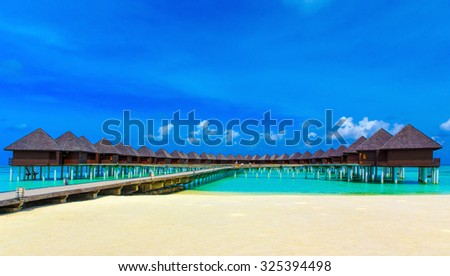 tropical beach in Maldives with few palm trees and blue lagoon #325394498
