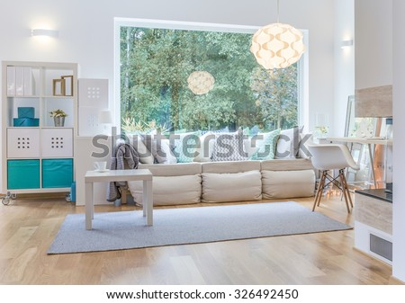 Spacious bright living room with big window