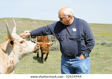 man stroking longhorn while another longhorn approaches #32654944