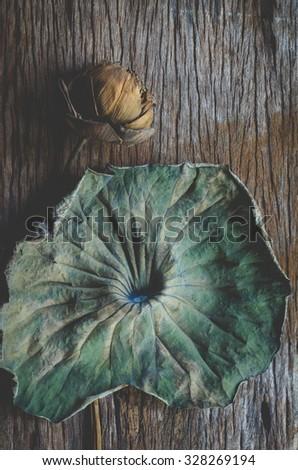 Dry lotus flower on Old wood  #328269194