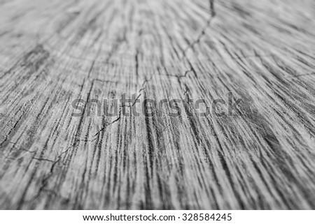 wood textures #328584245