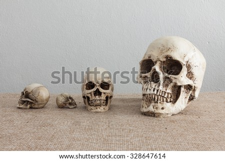Set of skulls on brown sack cloth and gray background #328647614