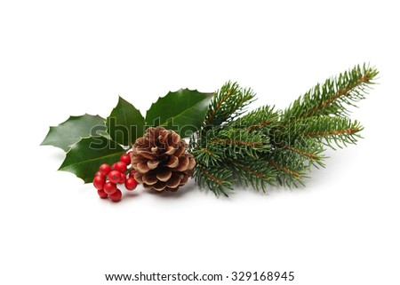 Christmas decoration of holly berry and pine cone #329168945