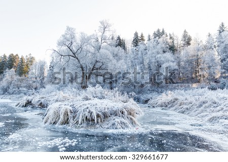 Winter landscape, river under the ice and tree branches covered with white frost Royalty-Free Stock Photo #329661677