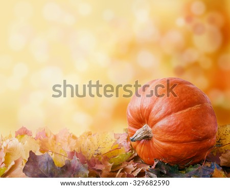 pumpkin on autumn leaves. bokeh background with space for your text