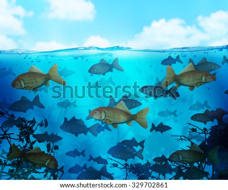 red fish business #329702861