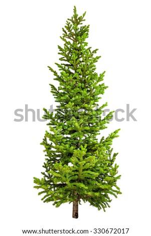 Christmas tree isolated on white background. #330672017