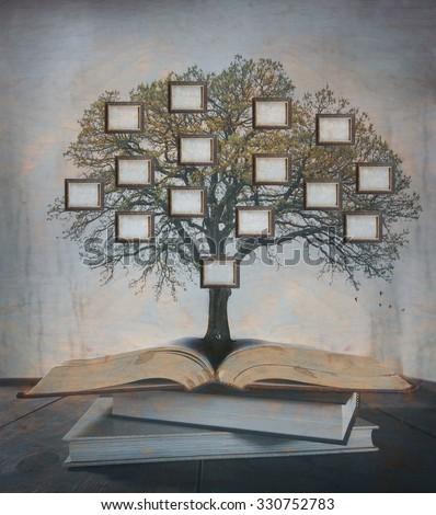 Family Tree, genealogy.