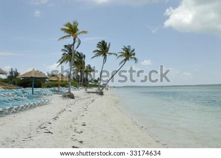 A beach in the Bahamas #33174634