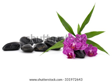 Zen pebbles and orchid flower. Stone spa and healthcare concept. #331972643