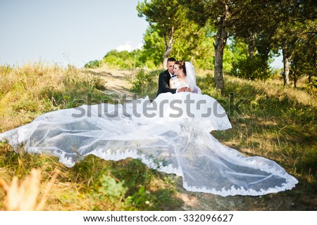 wedding couple on panorama of city and river. bride with long veil #332096627