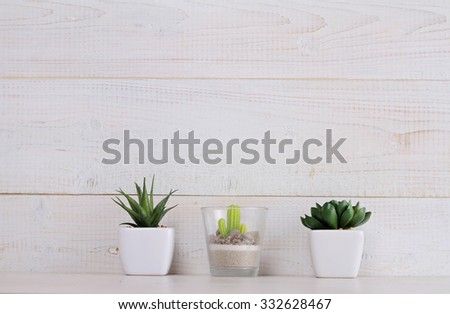 Succulents and cactus  in pots on over white wooden background. Home interior decoration. Scandinavian or  shabby chic style. Copy space image #332628467