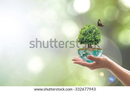 Saving environment and natural conservation concept with tree planing on green globe earth on volunteer's hands: Elements of this image furnished by NASA #332677943