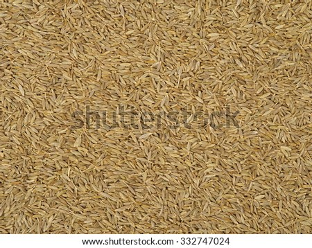 Cumin seeds texture, full frame background. Second most popular spice in the world after black pepper. #332747024