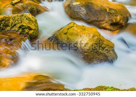 Water Flowing in Thai Forest, Thailand. #332750945