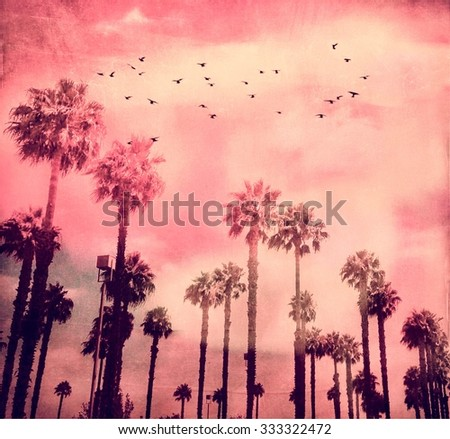 California Palm Trees Stand Tall Against A Pink Sky