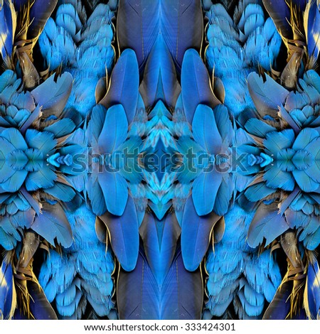 Amazing blue texture made of the puffy blue and gold macaw's bird feathers, exotic nature background