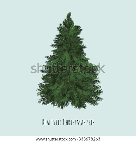 Real Christmas spruce tree. Sketch for greeting card with text, festive poster or party invitations.The attributes of Christmas and New year. Vector closeup illustration realistic style.