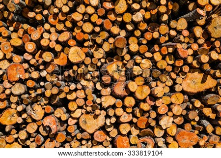 Background of dry chopped firewood logs stacked #333819104