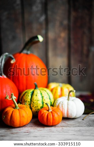 Colorful pumpkins and fall leaves on rustic wooden background #333915110