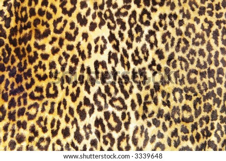 Closeup of a brown and black leopard print