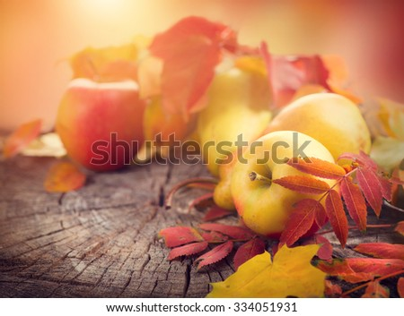 Thanksgiving background. Beautiful vintage styled autumn fruits and colorful leaves over wooden table Royalty-Free Stock Photo #334051931