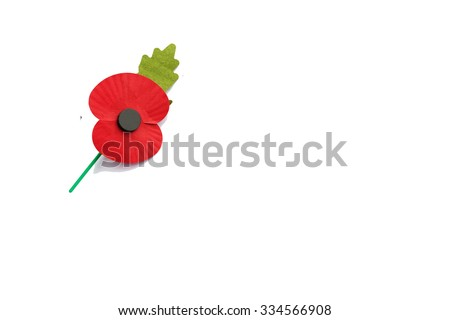 Poppy isolated on white with text space - Remembrance Day