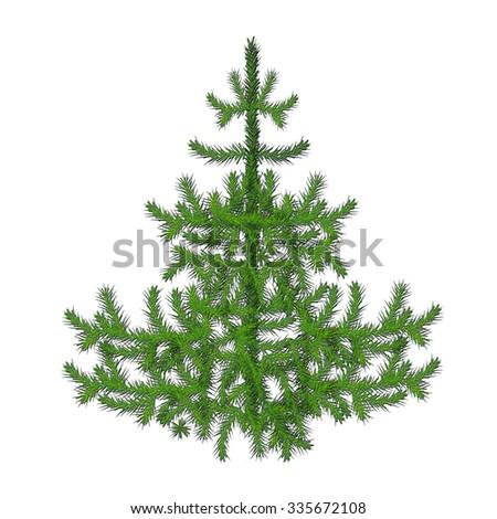 Fir tree illustration #335672108