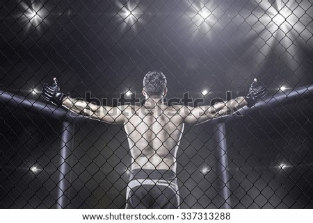 Mma fighter in cage celebrating win, view from behind Royalty-Free Stock Photo #337313288