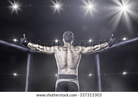 Mma fighter in cage after victory, behind view Royalty-Free Stock Photo #337313303